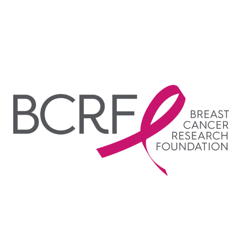 Thumbnail of charity 'Breast Cancer Research Foundation'