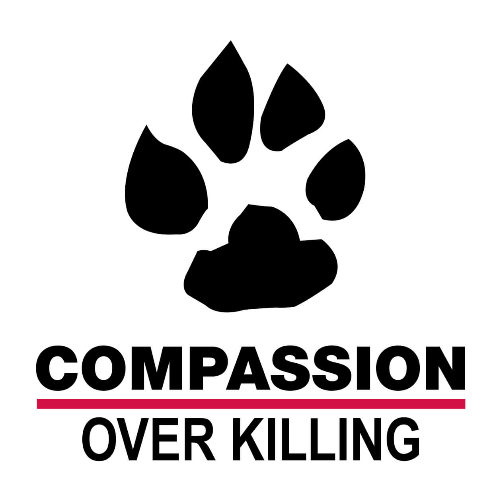 Charity 'Compassion Over Killing' picture