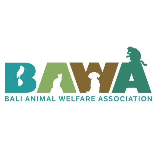 Picture of charity 'Bali Animal Welfare Association'
