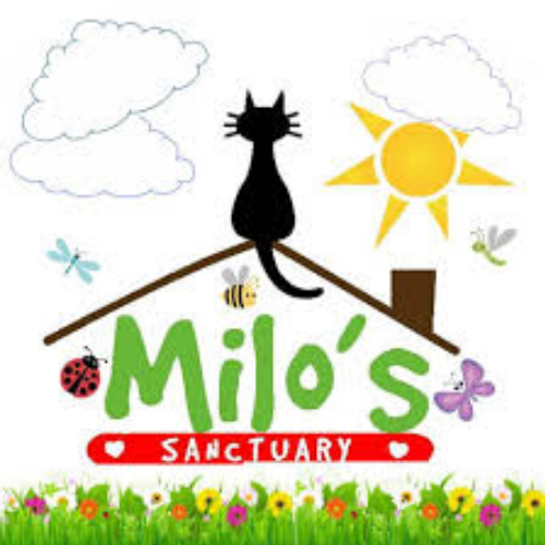 Picture of charity 'Milo Sanctuary'